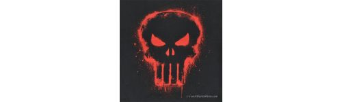 THE PUNISHER™